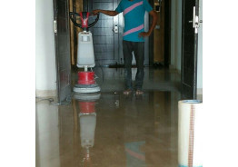 Floor Honing & Polishing Process-: